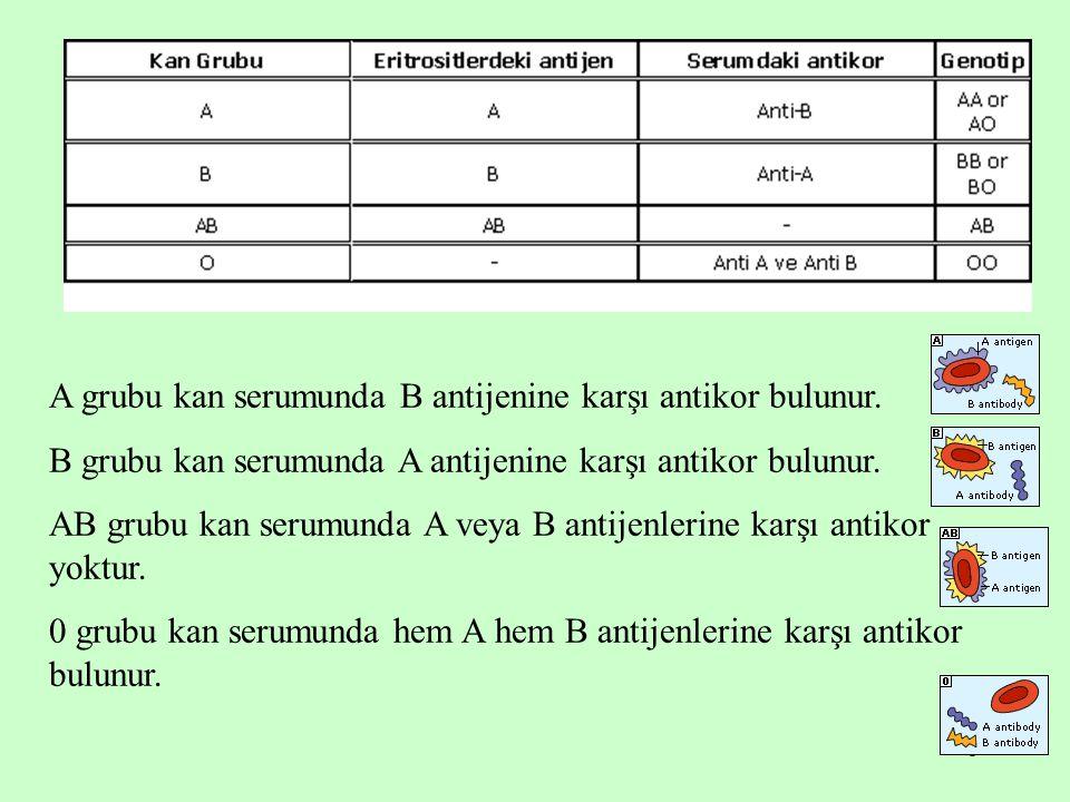 5 A grubu kan serumunda B antijenine karşı antikor bulunur. B grubu kan serumunda A antijenine karşı antikor bulunur. AB grubu kan serumunda A veya B