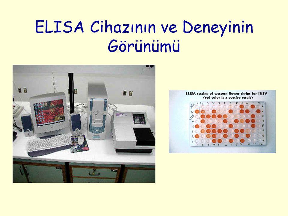 ELISA Cihazının ve Deneyinin Görünümü