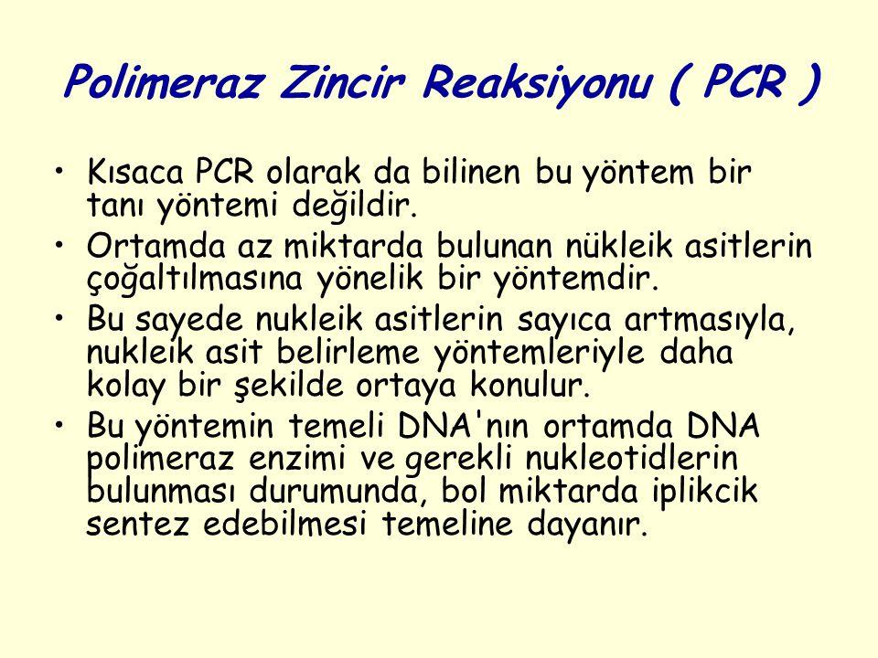 Polimeraz Zincir Reaksiyonu ( PCR ) Kısaca PCR olarak da bilinen bu yöntem bir tanı yöntemi değildir. Ortamda az miktarda bulunan nükleik asitlerin ço