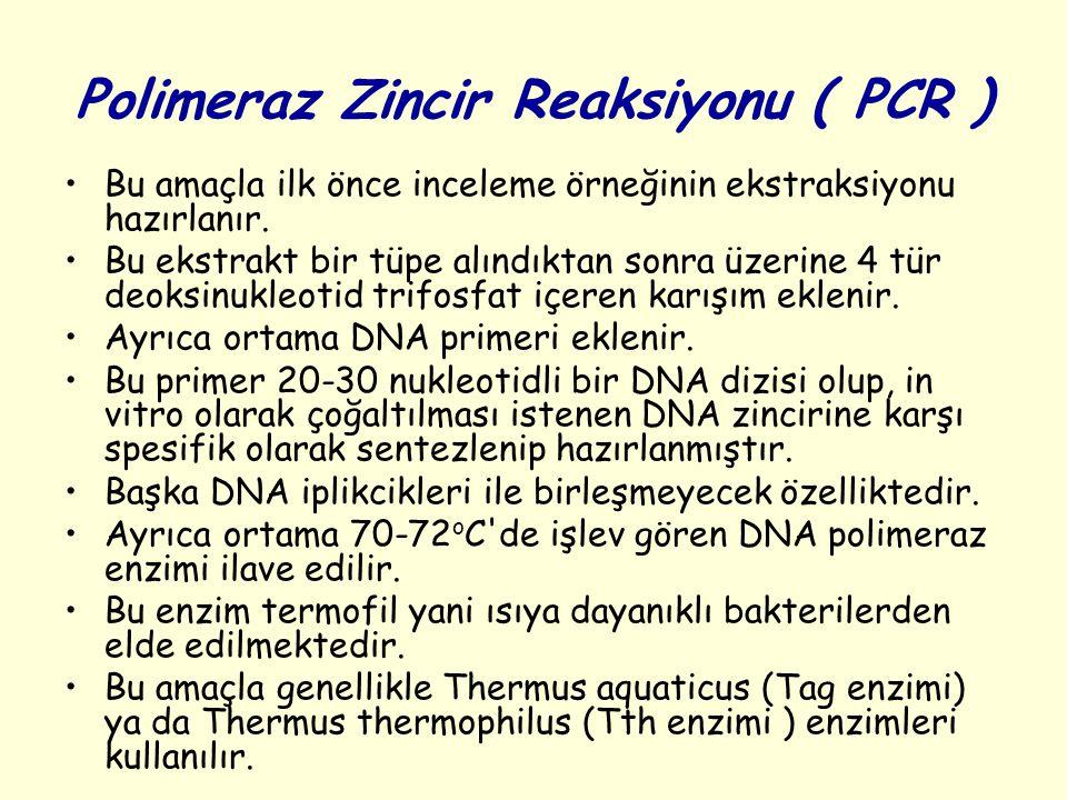 Polimeraz Zincir Reaksiyonu ( PCR ) Bu amaçla ilk önce inceleme örneğinin ekstraksiyonu hazırlanır. Bu ekstrakt bir tüpe alındıktan sonra üzerine 4 tü