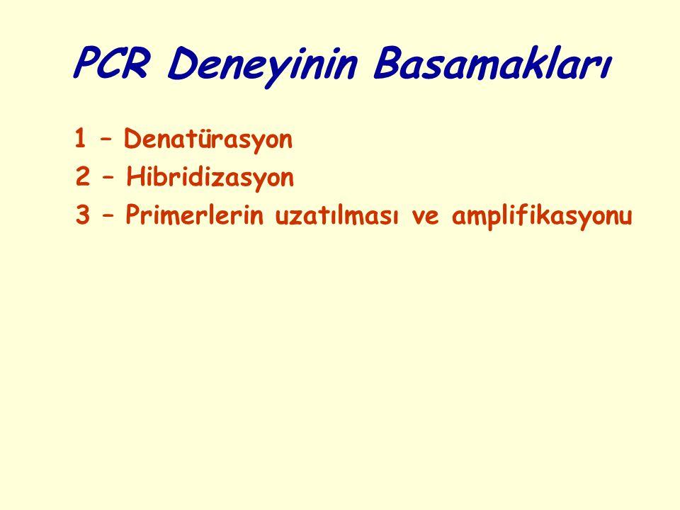 PCR Deneyinin Basamakları 1 – Denatürasyon 2 – Hibridizasyon 3 – Primerlerin uzatılması ve amplifikasyonu