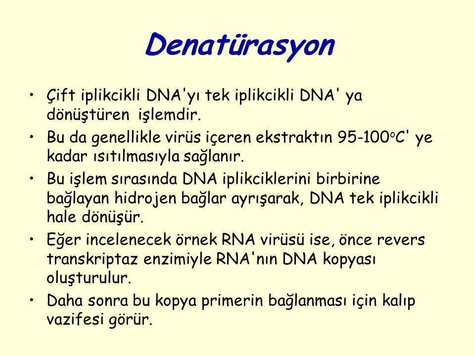 Denatürasyon Çift iplikcikli DNA'yı tek iplikcikli DNA' ya dönüştüren işlemdir. Bu da genellikle virüs içeren ekstraktın 95-100 o C' ye kadar ısıtılma