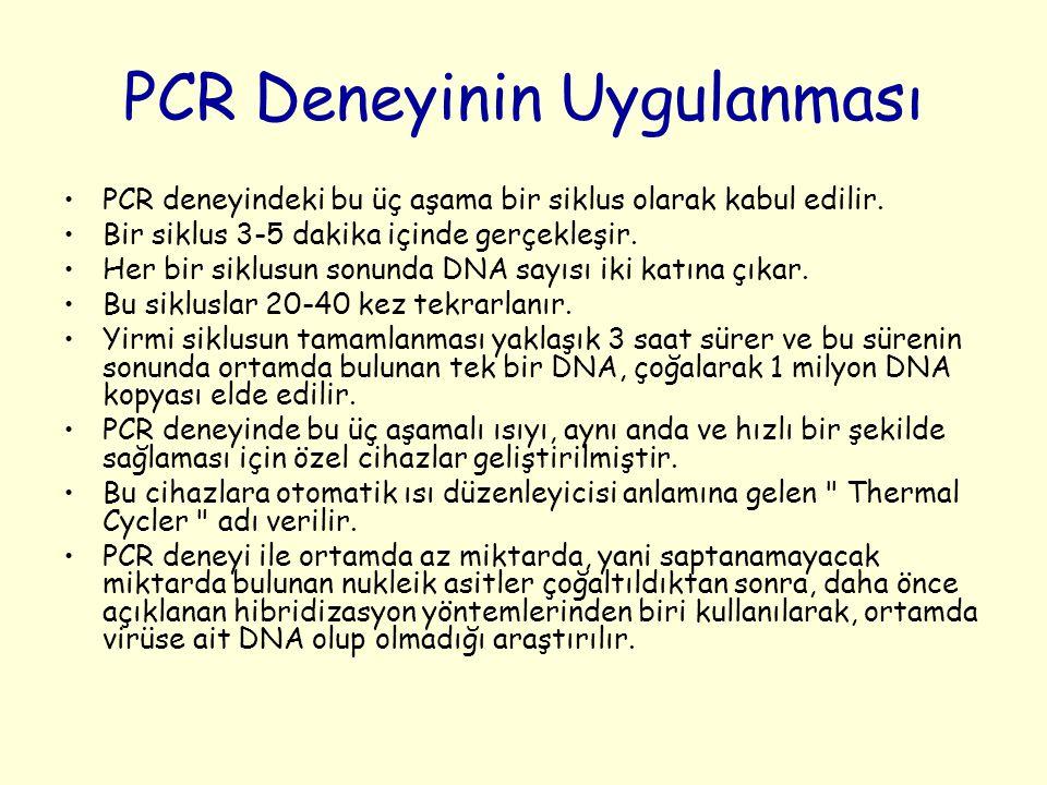 PCR Deneyinin Uygulanması PCR deneyindeki bu üç aşama bir siklus olarak kabul edilir. Bir siklus 3-5 dakika içinde gerçekleşir. Her bir siklusun sonun
