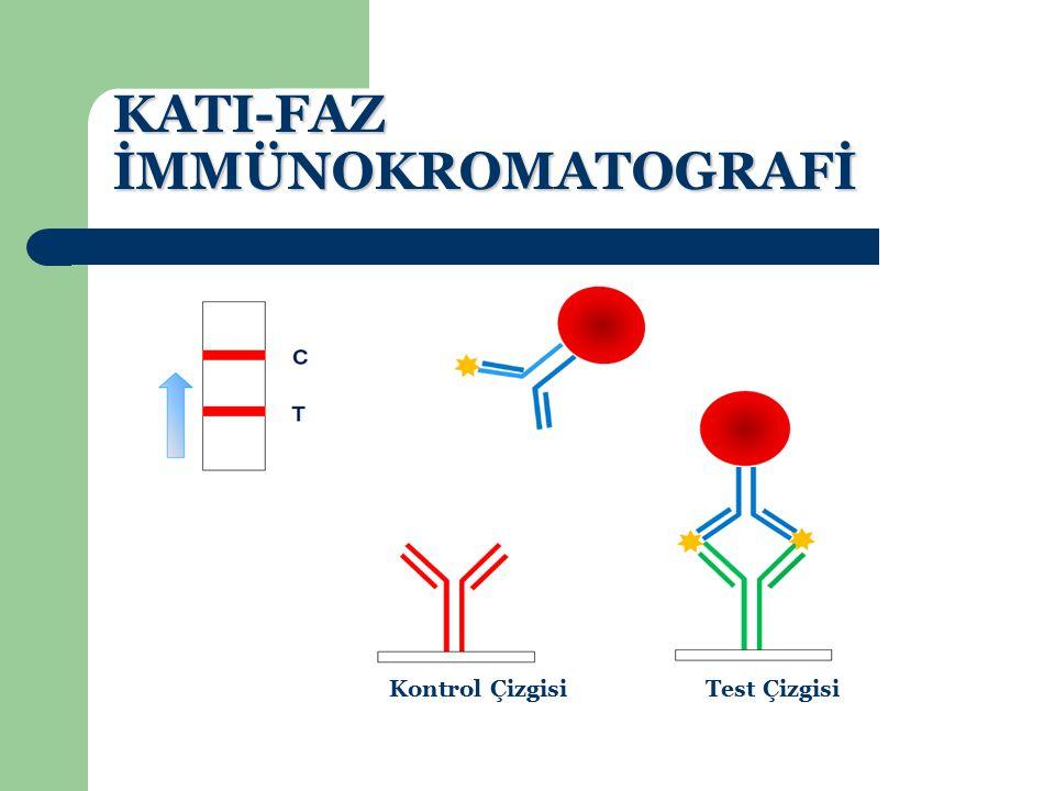 KATI-FAZ İMMÜNOKROMATOGRAFİ Kontrol Çizgisi (C)Test Çizgisi (T) Belirteç (Altın Nanopartikül-AuNP) DedektörAntikor Analit j İmmobilizeAntikor