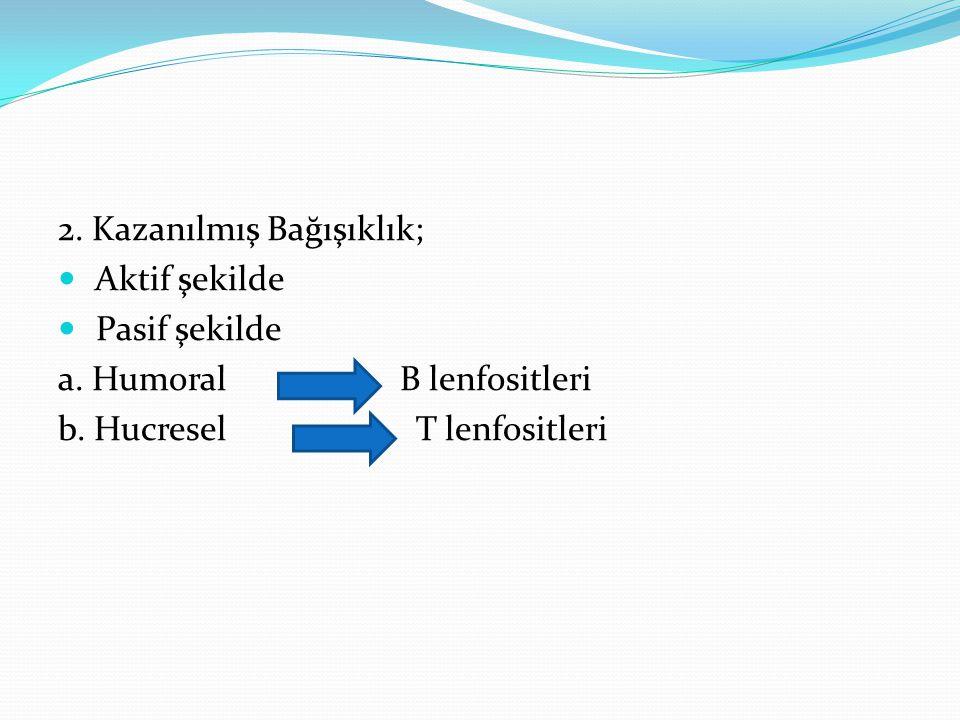 2. Kazanılmış Bağışıklık; Aktif şekilde Pasif şekilde a. Humoral B lenfositleri b. Hucresel T lenfositleri