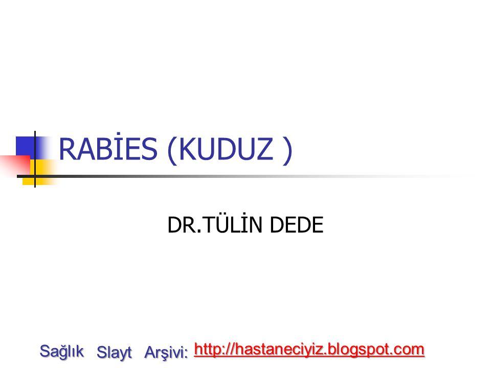 RABİES (KUDUZ ) DR.TÜLİN DEDE Sağlık Slayt Arşivi: http://hastaneciyiz.blogspot.com