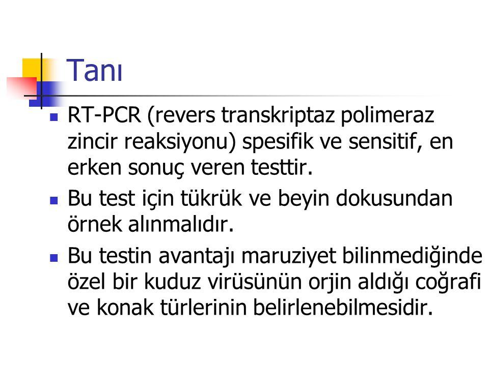 Tanı RT-PCR (revers transkriptaz polimeraz zincir reaksiyonu) spesifik ve sensitif, en erken sonuç veren testtir. Bu test için tükrük ve beyin dokusun
