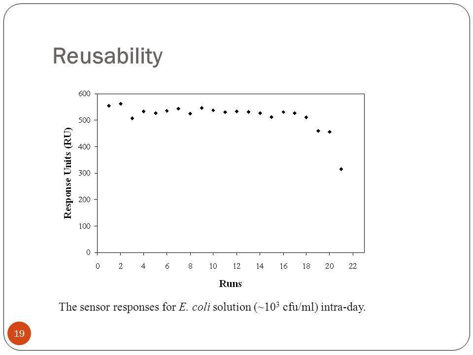 Reusability The sensor responses for E. coli solution (~10 3 cfu/ml) intra-day. 19