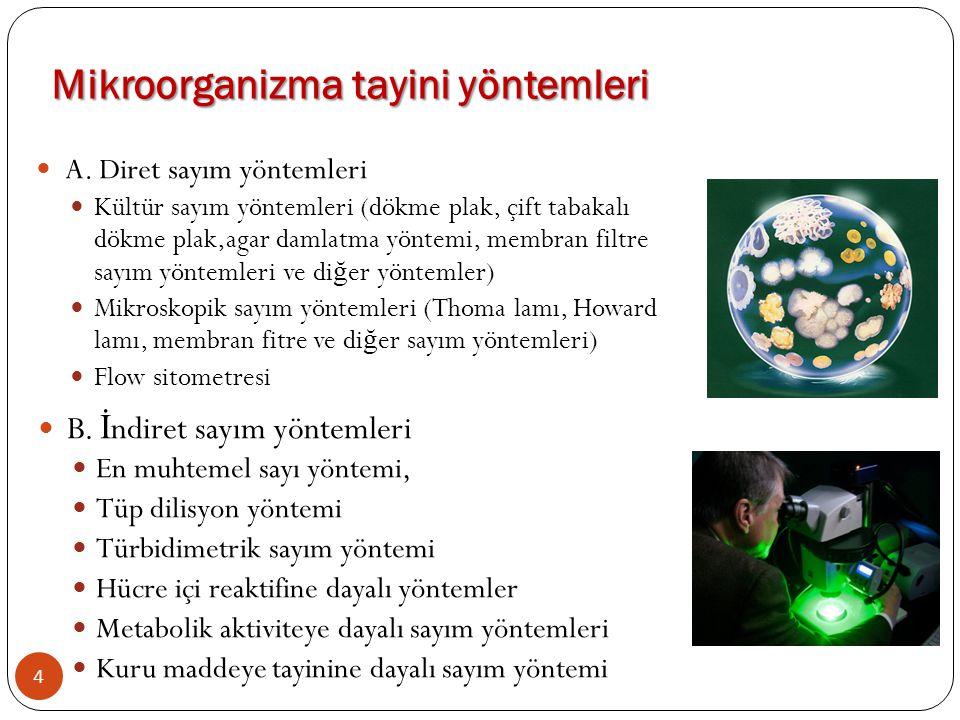 A. Diret sayım yöntemleri Kültür sayım yöntemleri (dökme plak, çift tabakalı dökme plak,agar damlatma yöntemi, membran filtre sayım yöntemleri ve di ğ