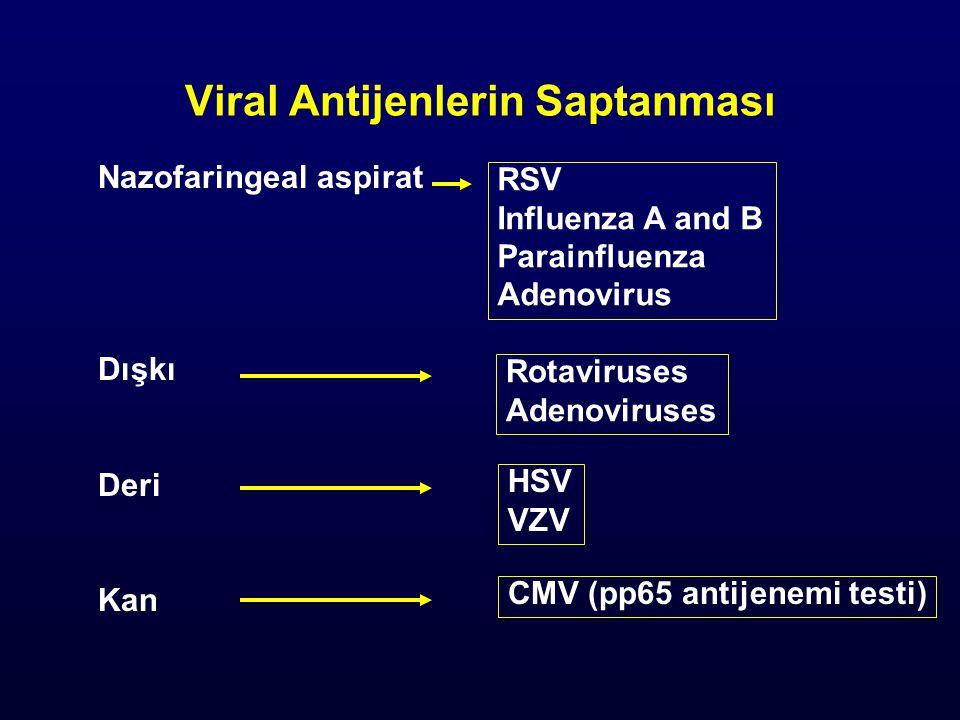 Nazofaringeal aspirat Dışkı Deri Kan RSV Influenza A and B Parainfluenza Adenovirus Rotaviruses Adenoviruses HSV VZV CMV (pp65 antijenemi testi)