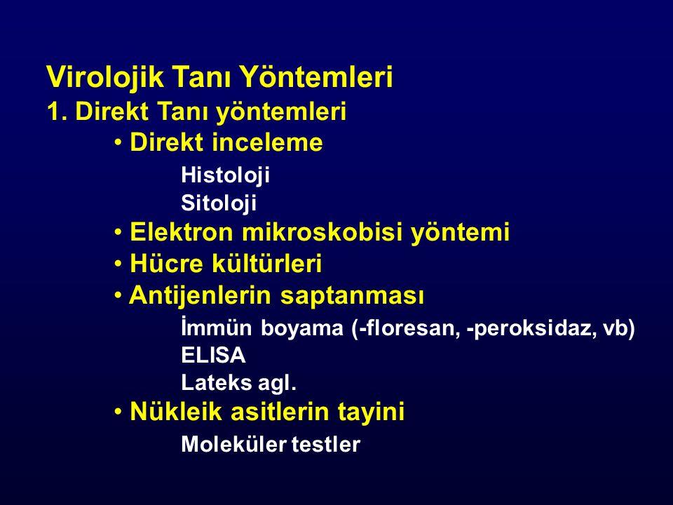 Virolojik Tanı Yöntemleri 2.