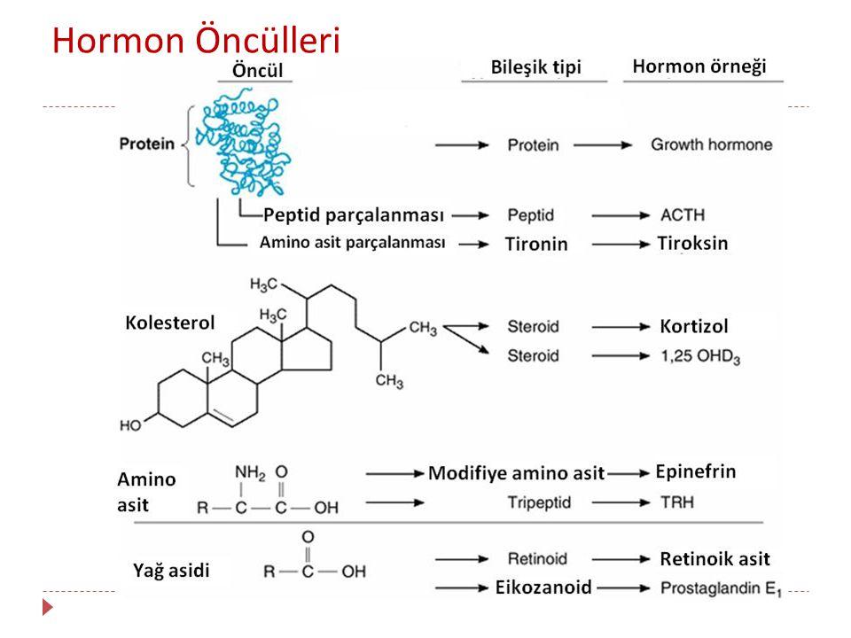  Tümörler tarafından ektopik hormon yapımı da olabilmektedir.