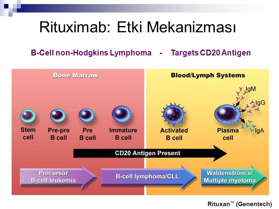 Rituximab: Etki Mekanizması B-Cell non-Hodgkins Lymphoma - Targets CD20 Antigen Rituxan ™ (Genentech)