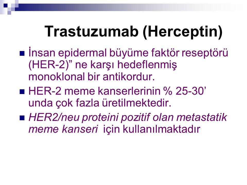 """Trastuzumab (Herceptin) İnsan epidermal büyüme faktör reseptörü (HER-2)"""" ne karşı hedeflenmiş monoklonal bir antikordur. HER-2 meme kanserlerinin % 25"""