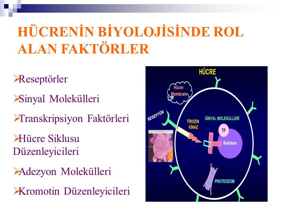 HÜCRENİN BİYOLOJİSİNDE ROL ALAN FAKTÖRLER  Reseptörler  Sinyal Molekülleri  Transkripsiyon Faktörleri  Hücre Siklusu Düzenleyicileri  Adezyon Mol