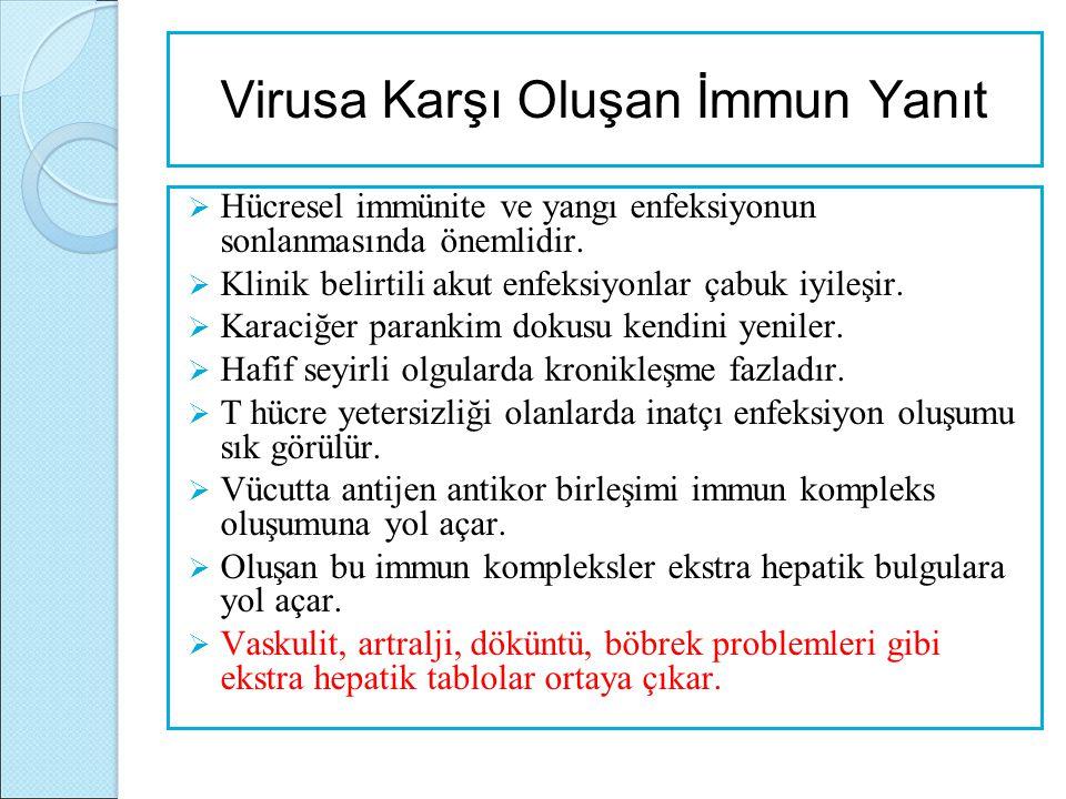 Virusa Karşı Oluşan İmmun Yanıt  Hücresel immünite ve yangı enfeksiyonun sonlanmasında önemlidir.  Klinik belirtili akut enfeksiyonlar çabuk iyileşi