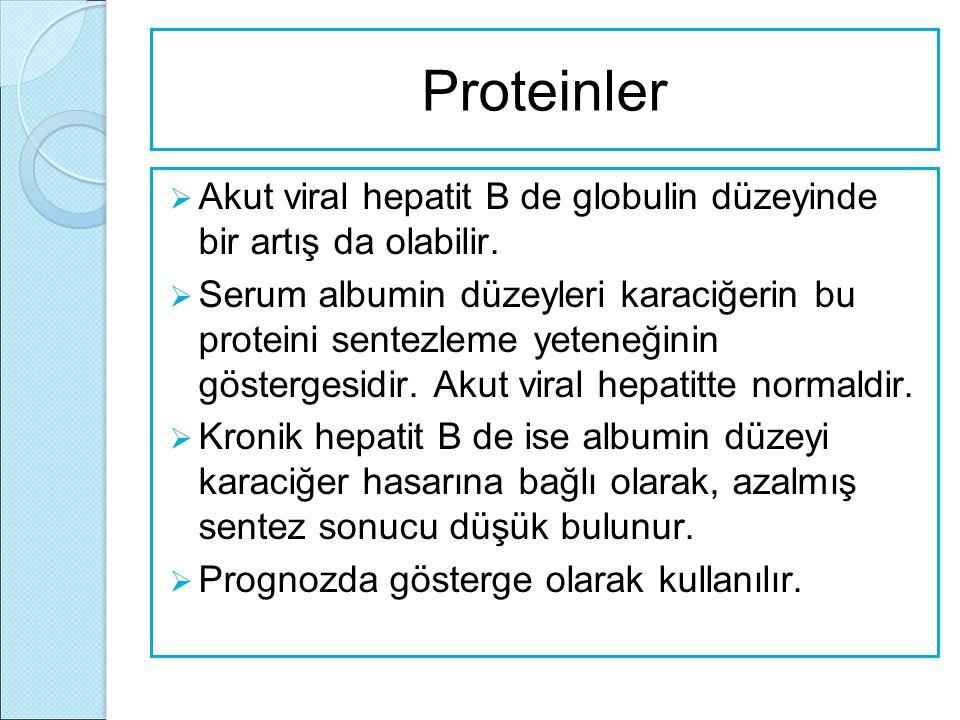 Proteinler  Akut viral hepatit B de globulin düzeyinde bir artış da olabilir.  Serum albumin düzeyleri karaciğerin bu proteini sentezleme yeteneğini