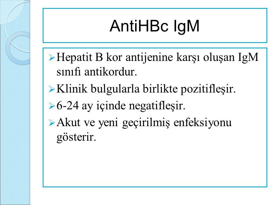 AntiHBc IgM  Hepatit B kor antijenine karşı oluşan IgM sınıfı antikordur.  Klinik bulgularla birlikte pozitifleşir.  6-24 ay içinde negatifleşir. 