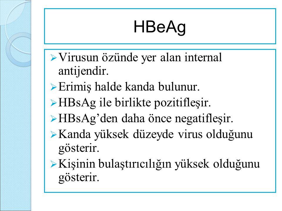 HBeAg  Virusun özünde yer alan internal antijendir.  Erimiş halde kanda bulunur.  HBsAg ile birlikte pozitifleşir.  HBsAg'den daha önce negatifleş