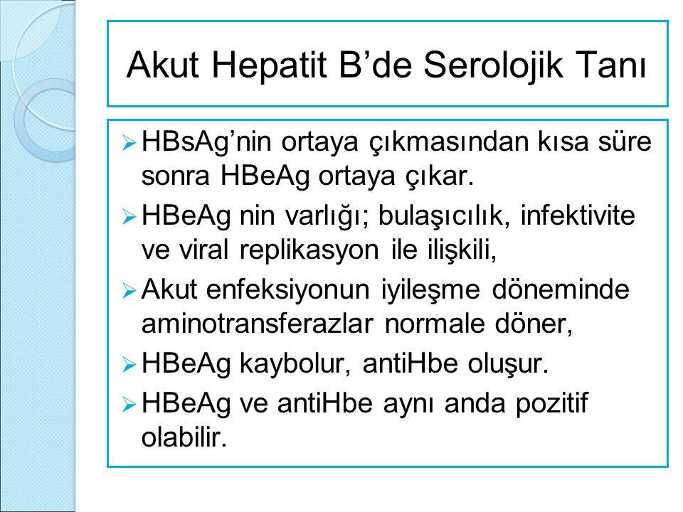 Akut Hepatit B'de Serolojik Tanı  HBsAg'nin ortaya çıkmasından kısa süre sonra HBeAg ortaya çıkar.  HBeAg nin varlığı; bulaşıcılık, infektivite ve v