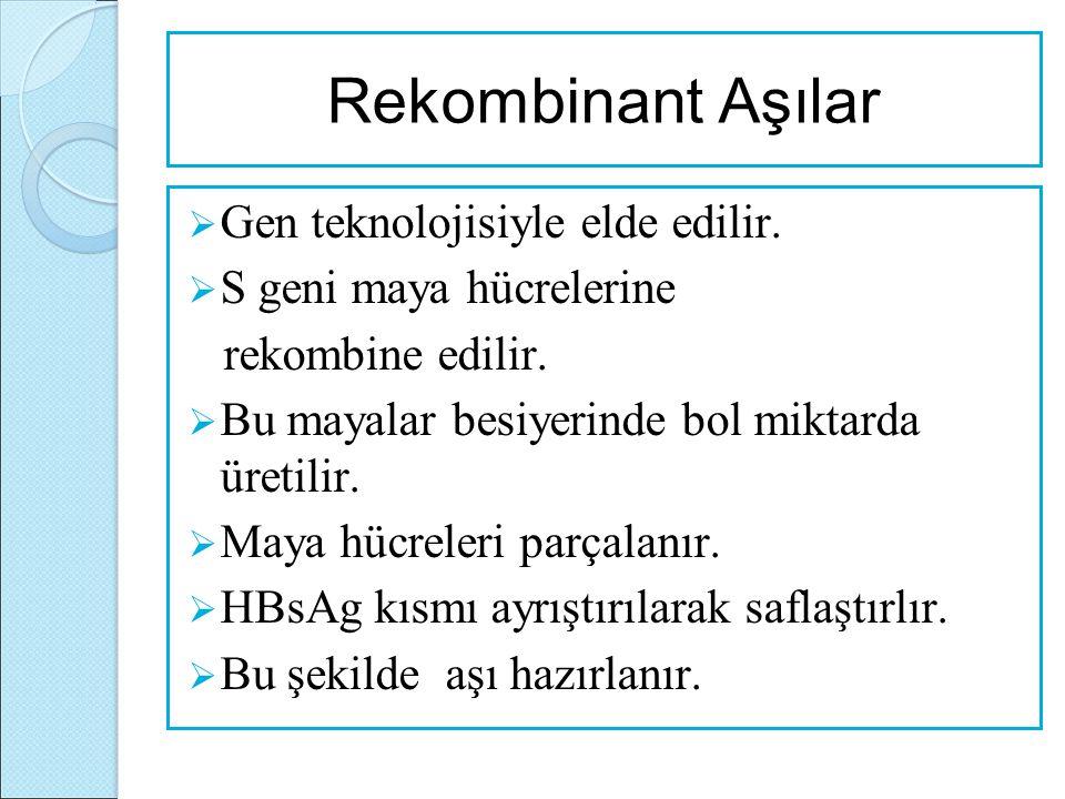 Rekombinant Aşılar  Gen teknolojisiyle elde edilir.  S geni maya hücrelerine rekombine edilir.  Bu mayalar besiyerinde bol miktarda üretilir.  May