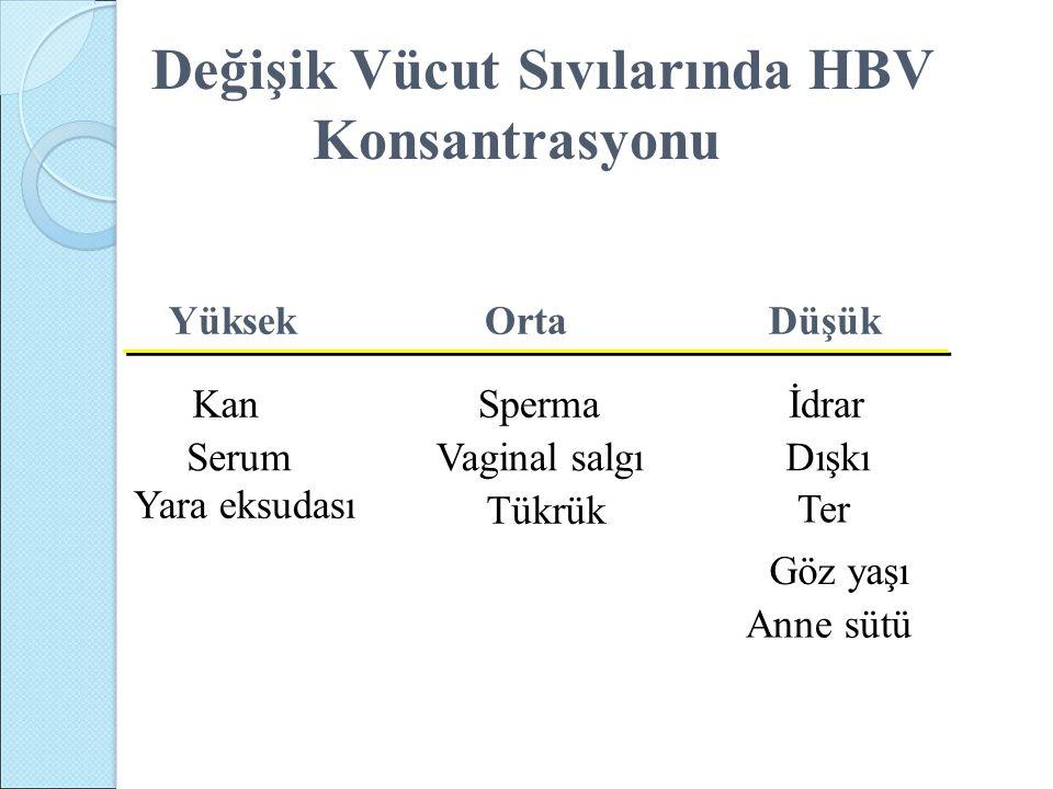 YüksekOrta Düşük KanSpermaİdrar SerumVaginal salgıDışkı Yara eksudası Tükrük Ter Göz yaşı Anne sütü Değişik Vücut Sıvılarında HBV Konsantrasyonu