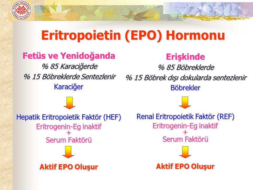 4- Eritrosit Membran Bozukluğu ve Enzim Eksikliğine Bağlı Anemiler Bağlı Anemiler 5- Ana hücre Yetersizliğine Bağlı Anemiler Ana hücre yetersizliği Multipotansiyel Aplastik Anemi Unipotansiyel hücre ve EPO azlığı 6- Kİ Fonksiyonu Bozukluğuna Bağlı Anemiler Metastatik hastalıklar, Lösemi, Lenfoma Metastatik hastalıklar, Lösemi, Lenfoma