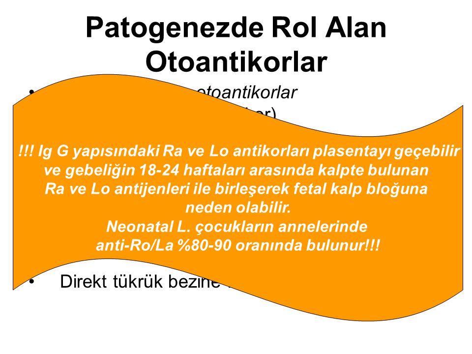 Patogenezde Rol Alan Otoantikorlar En sık gözlenen otoantikorlar -ANA (anti-nükleer antikor) -RF(romatoid faktör) -Anti-ENA antikor -Anti-SSA(Ro) anti