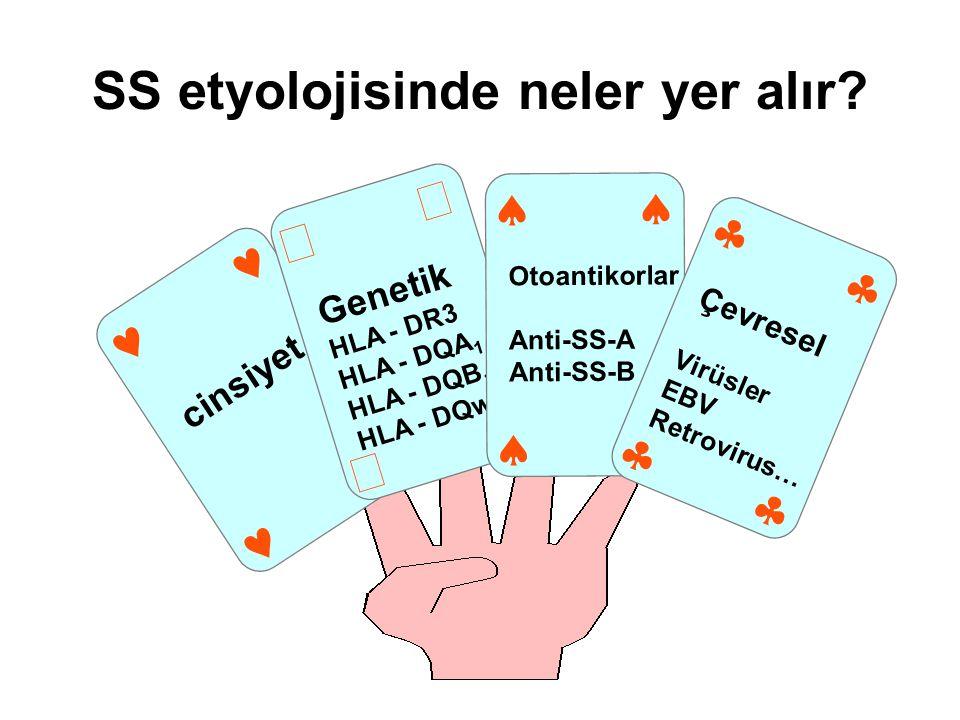 SS etyolojisinde neler yer alır? cinsiyet     Genetik HLA - DR3 HLA - DQA 1 HLA - DQB 1 HLA - DQw 1     Otoantikorlar Anti-SS-A Anti-SS-B  