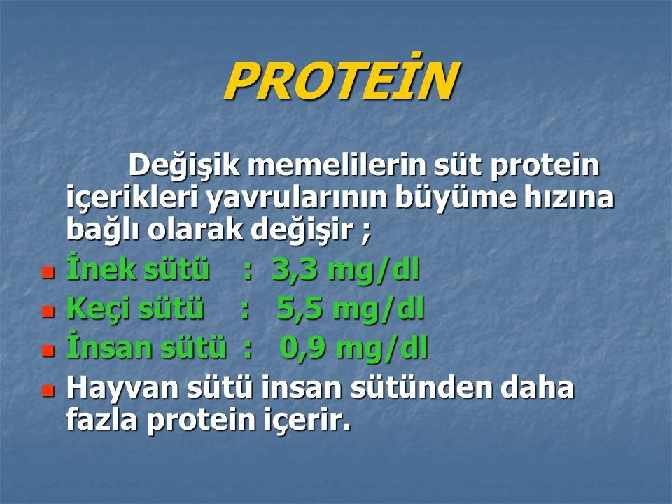 PROTEİN Değişik memelilerin süt protein içerikleri yavrularının büyüme hızına bağlı olarak değişir ; Değişik memelilerin süt protein içerikleri yavrul