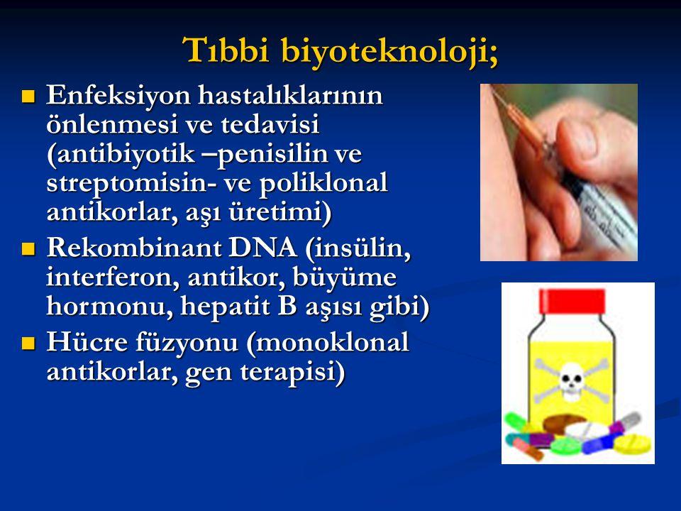 İLAÇ Rekombinant DNA teknolojisi ile üretilen ilaçlara rekombinant ilaç denir ve antikorlar, aşılar, kan pıhtılaşma faktörleri, hormonlar, büyütme faktörleri, sitokinler, enzimler, süt proteinleri, kollajen ve fibrojen bu tür ilaçlara örnek olarak gösterilebilir.