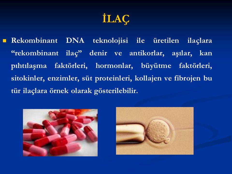 """İLAÇ Rekombinant DNA teknolojisi ile üretilen ilaçlara """"rekombinant ilaç"""" denir ve antikorlar, aşılar, kan pıhtılaşma faktörleri, hormonlar, büyütme f"""