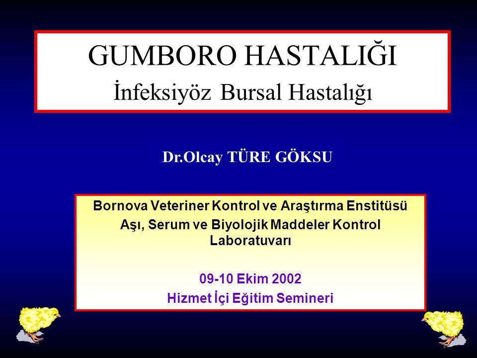 GUMBORO HASTALIĞI İnfeksiyöz Bursal Hastalığı Bornova Veteriner Kontrol ve Araştırma Enstitüsü Aşı, Serum ve Biyolojik Maddeler Kontrol Laboratuvarı 0