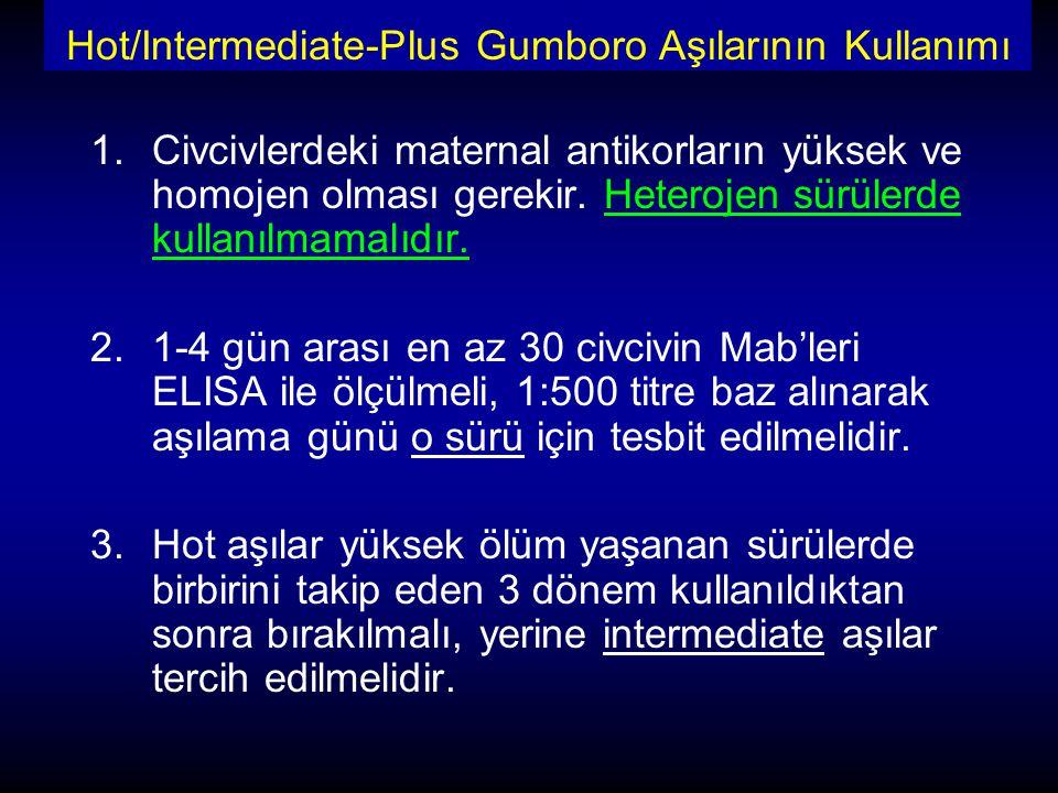 Hot/Intermediate-Plus Gumboro Aşılarının Kullanımı 1.Civcivlerdeki maternal antikorların yüksek ve homojen olması gerekir. Heterojen sürülerde kullanı