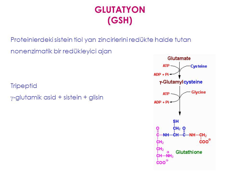 Glutatyon (  glutamil sisteinil glisin) TRH (Thyrotropin releasing hormone) - hipofizden salgılanır, tiroid bezinden tiroid hormon salımını uyarır TR