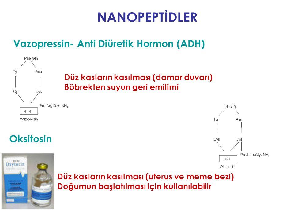 Vazopressin- Anti Diüretik Hormon (ADH) Hipofizden salınırlar NANOPEPTİDLER Oksitosin