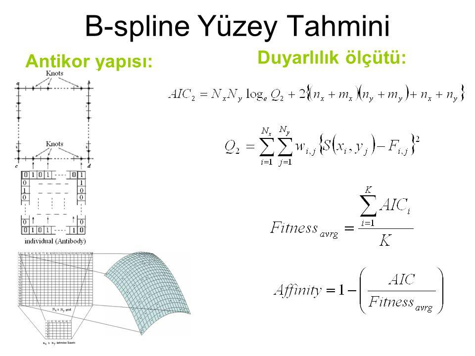 Duyarlılık ölçütü: Antikor yapısı: B-spline Yüzey Tahmini
