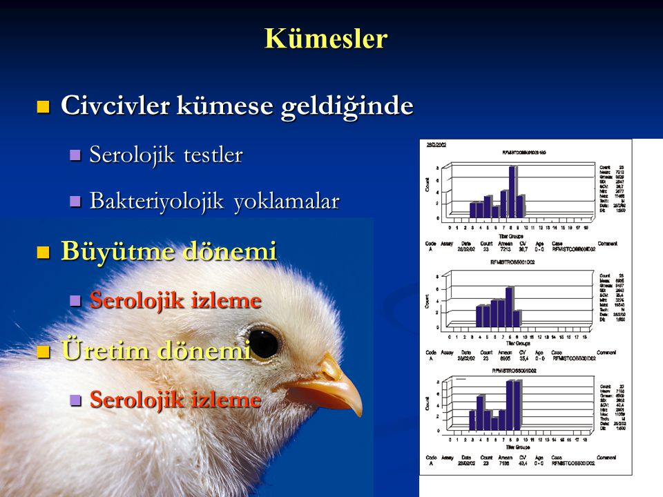 Kuluçka Rutin bakteriyolojik ve mikolojik izleme Rutin bakteriyolojik ve mikolojik izleme Serolojik izleme Serolojik izleme Salmonella izleme Salmonel