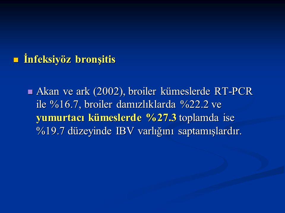 ORT ORT Broiler sürülerden %11.46 izolasyon (Serotip A dominant), ELISA ile %64.4 seropozitiflik saptanmıştır (Turan ve Ak; 2002) Broiler sürülerden %