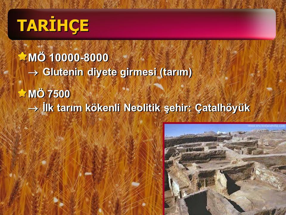 Glutensiz Diyet Sosyal yaşamı sınırlıyor Glutensiz gıdalar daha pahalı Tadı daha kötü Ülkeden ülkeye değişen gıda/para yardımı Türkiye –0-5 y: 52.50 TL –5-15 y: 80 TL –15 y  : 72.50 TL –1 kg un: 25 TL –1 kg makarna: 26 TL Diyet dengeli / uygulanabilir / çeşitliliği olan / yeterli / tadı güzel / yeterli enerji –KH: %50-60 –Yağ: %30-35 –Protein: %10-15 –Vitamin / mineral / su / lif 3-6 öğün