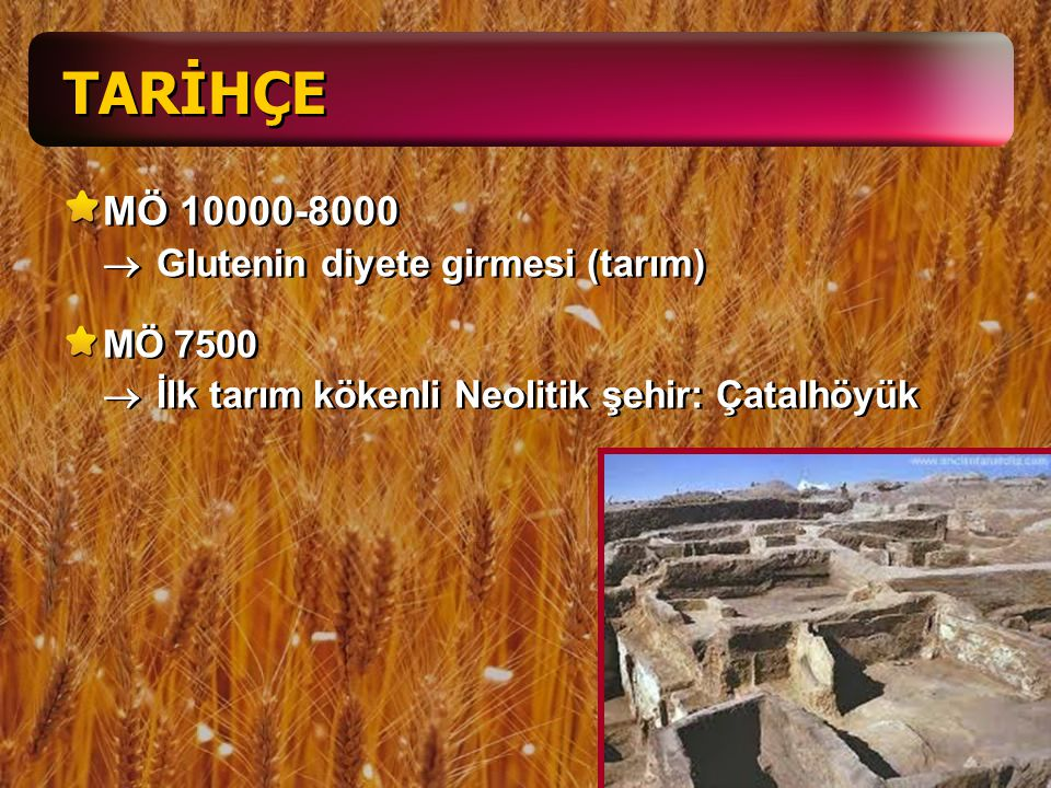 120-200 Areteo de Cappadocia  Klinik bulgular Koiliakos (barsak hastalığı) Coeliac Affection