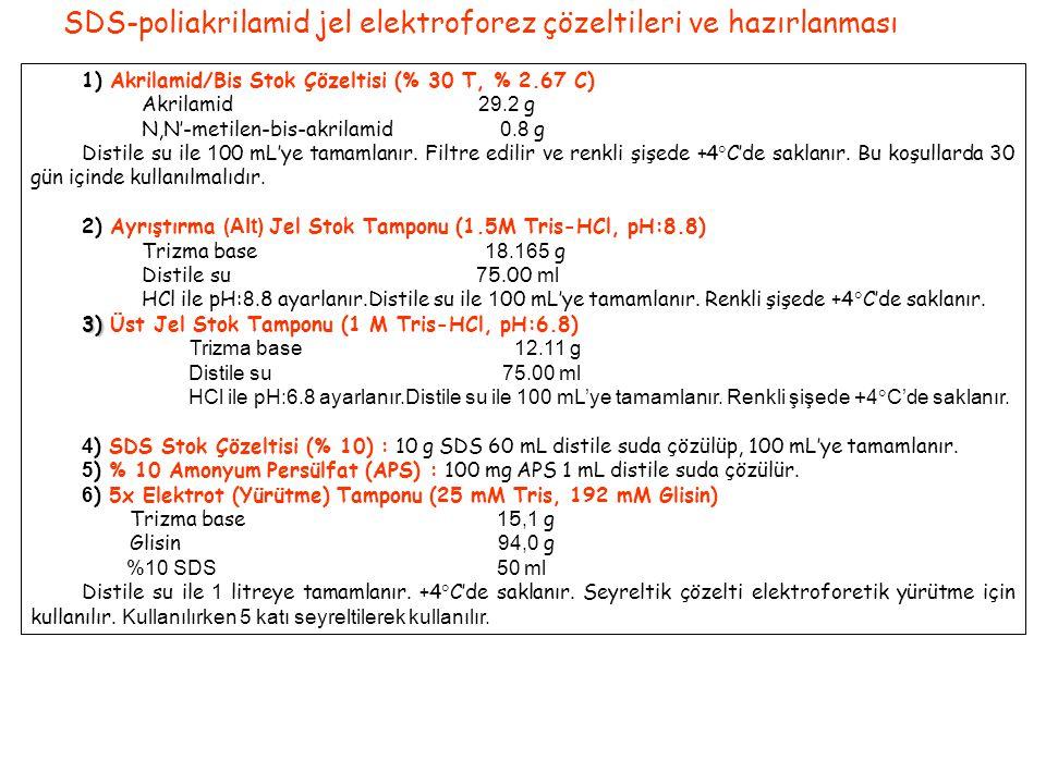 SDS-poliakrilamid jel elektroforez çözeltileri ve hazırlanması 1) Akrilamid/Bis Stok Çözeltisi (% 30 T, % 2.67 C) Akrilamid 29.2 g N,N'-metilen-bis-akrilamid 0.8 g Distile su ile 1 00 mL'ye tamamlanır.