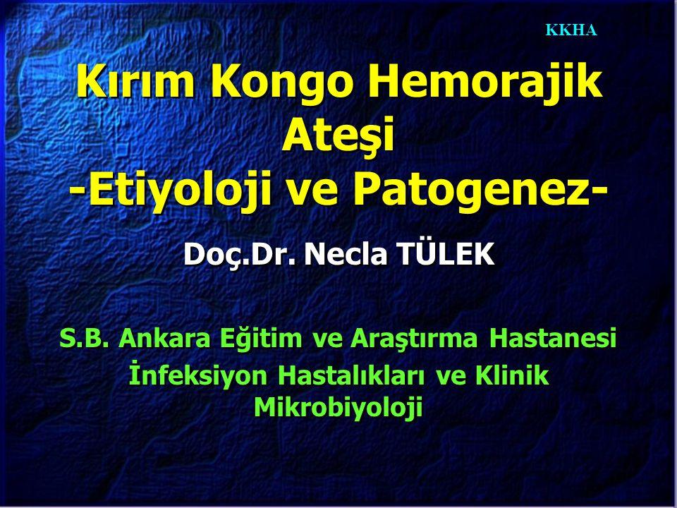 KKHA Kırım Kongo Hemorajik Ateşi -Etiyoloji ve Patogenez- Doç.Dr. Necla TÜLEK S.B. Ankara Eğitim ve Araştırma Hastanesi İnfeksiyon Hastalıkları ve Kli