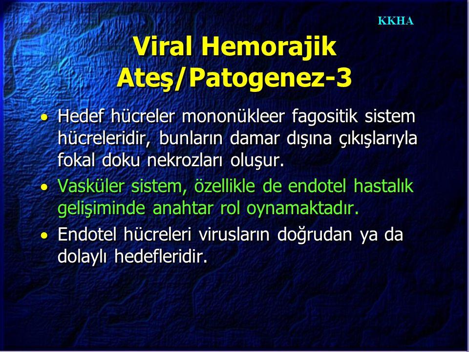 KKHA Viral Hemorajik Ateş/Patogenez-3  Hedef hücreler mononükleer fagositik sistem hücreleridir, bunların damar dışına çıkışlarıyla fokal doku nekroz