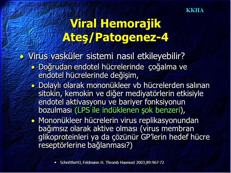 KKHA Viral Hemorajik Ateş/Patogenez-4  Virus vasküler sistemi nasıl etkileyebilir?  Doğrudan endotel hücrelerinde çoğalma ve endotel hücrelerinde de