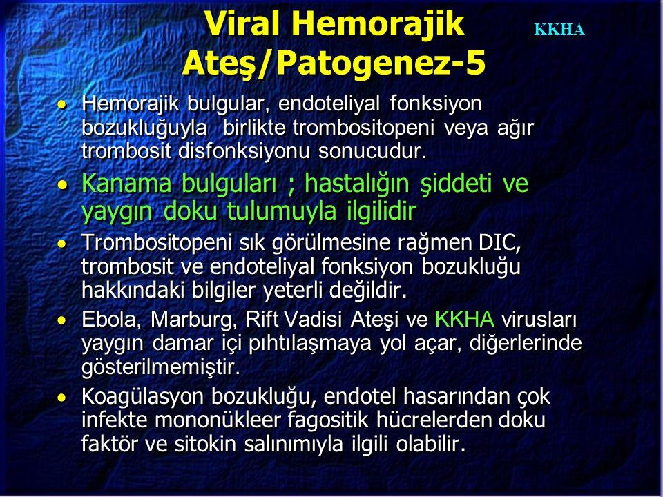 KKHA Viral Hemorajik Ateş/Patogenez-5  Hemorajik bulgular, endoteliyal fonksiyon bozukluğuyla birlikte trombositopeni veya ağır trombosit disfonksiyo