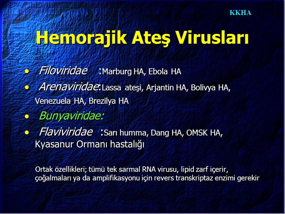 KKHA  Filoviridae : Marburg HA, Ebola HA  Arenaviridae: Lassa ateşi, Arjantin HA, Bolivya HA, Venezuela HA, Brezilya HA  Bunyaviridae:  Flavivirid