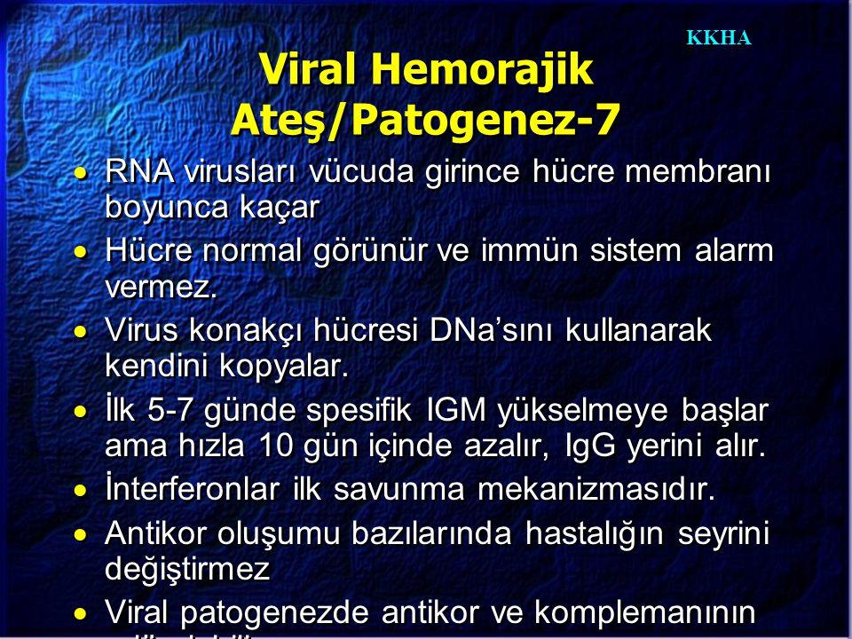 KKHA Viral Hemorajik Ateş/Patogenez-7  RNA virusları vücuda girince hücre membranı boyunca kaçar  Hücre normal görünür ve immün sistem alarm vermez.