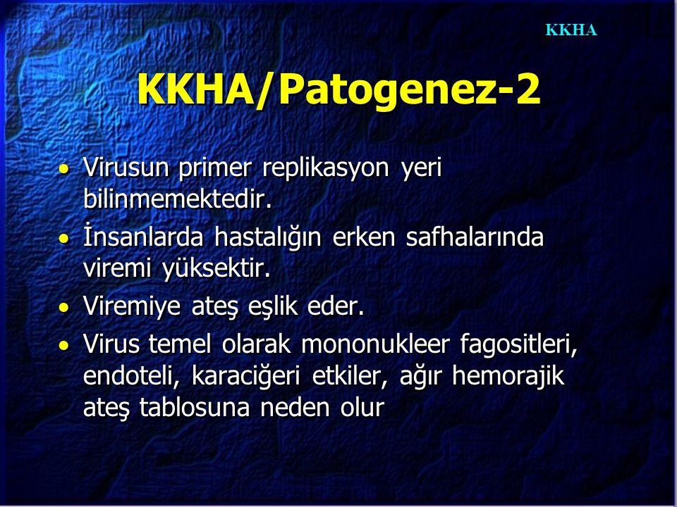 KKHA KKHA/Patogenez-2  Virusun primer replikasyon yeri bilinmemektedir.  İnsanlarda hastalığın erken safhalarında viremi yüksektir.  Viremiye ateş
