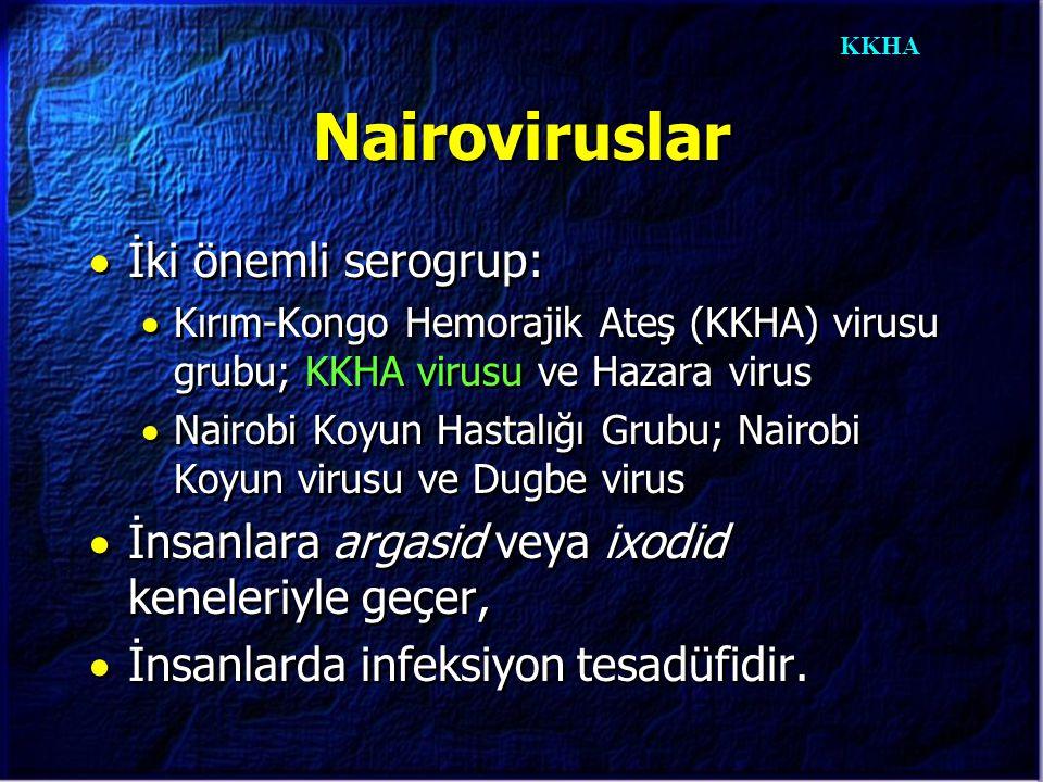 KKHA Nairoviruslar  İki önemli serogrup:  Kırım-Kongo Hemorajik Ateş (KKHA) virusu grubu; KKHA virusu ve Hazara virus  Nairobi Koyun Hastalığı Grub